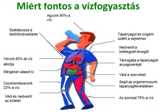 kinezioterápia magas vérnyomás esetén vagus ideg és magas vérnyomás
